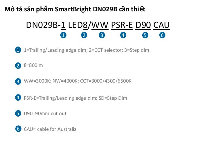 smartbright-dn029b